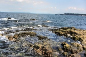 Rocky shore for fishing