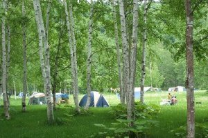 Tents at the Dream Campsite
