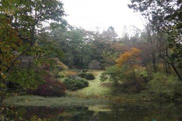 สวนพฤกษศาสตร์นิกโก้