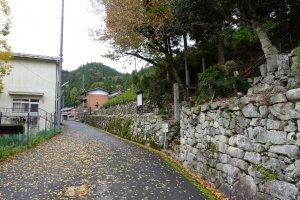 静かな山里の道