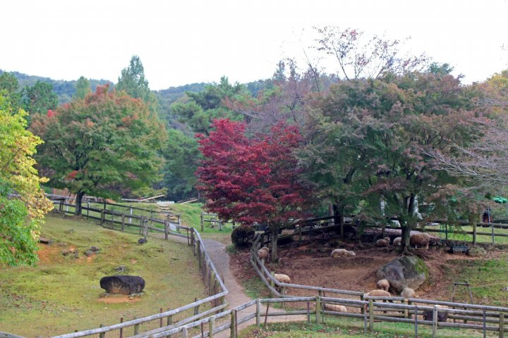 Yamazoe-mura di Nara