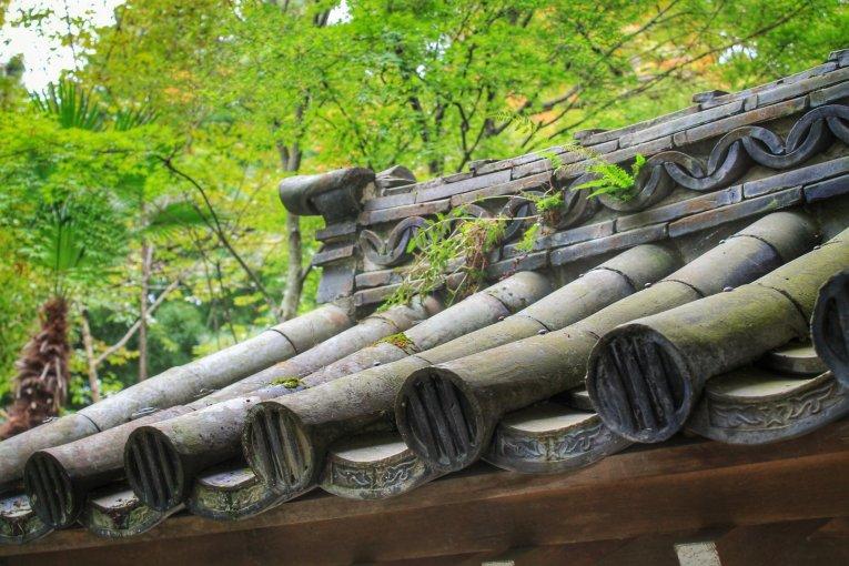 Vườn Zuiho-ji