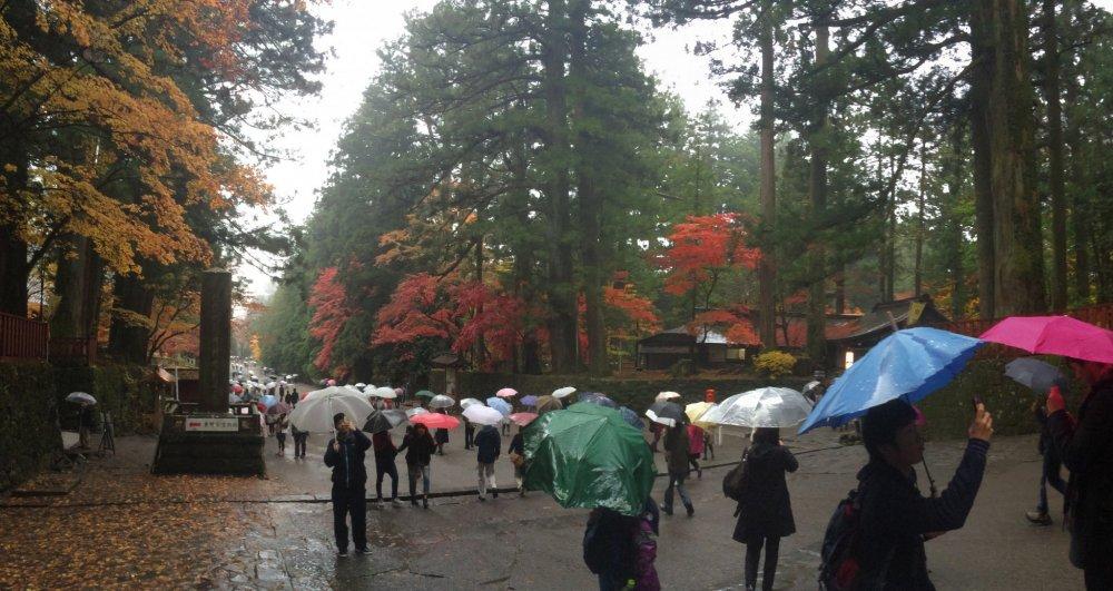 Turis-turis menerobos hujan