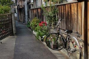 전형적인 옛 동네의한가로운 풍경. 마당을 대신해 조르륵 놓여 있는 정갈한 화분과 최고의 대중교통수단인 자전거.