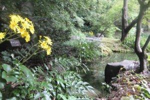 Beautiful Grounds, Suntory Yamazaki