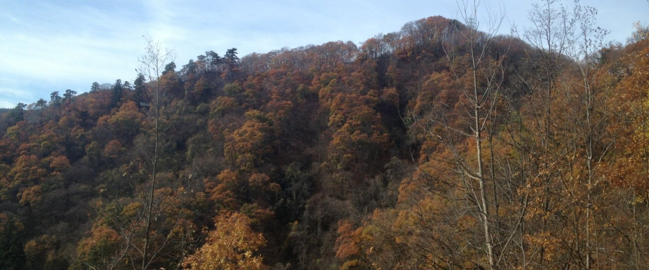 Scenery of green and orange highlands from the Asakawa Loop Line.