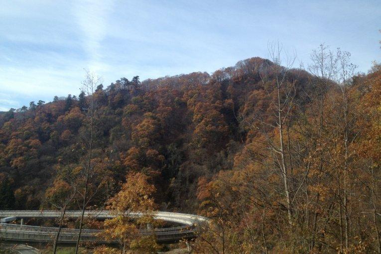 Nagano - Togakushi Day Trip