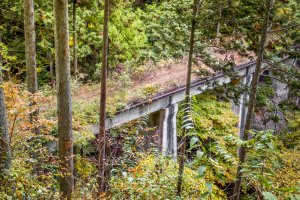 Everywhere you look there are reminders of this defunct railway like this bridge overgrown with dense vegetation