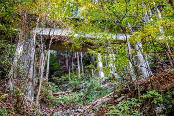 <p>The landscape seems to be littered with reminders of the past like this defunct railway bridge in the valleys above</p>
