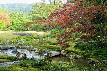 Le Jardin Murin-an en Automne
