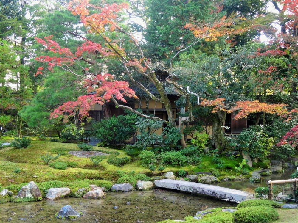 Le jardin murin an en automne kyoto japan travel for Jardin kyoto