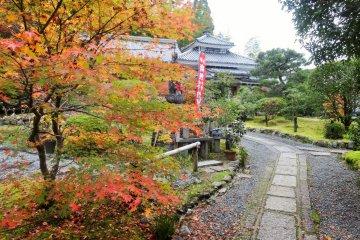 Daun Musim Gugur di Danrin-ji