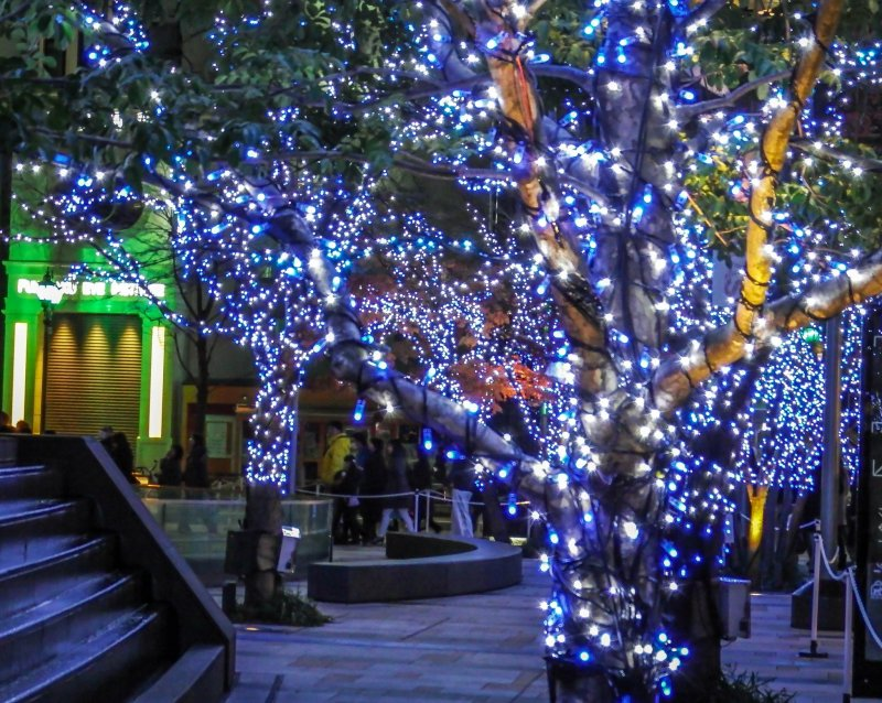 <p></p>  <p>Even at the start of Midtown&#39;s Illumination you get the sense that something special is about to happen</p>
