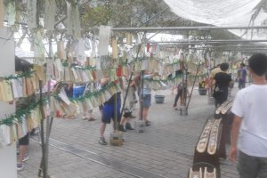 Bamboo wish tress with Tanzaku tied to them, containing the wishes of spectators and visitors.