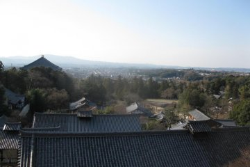A unique view of the ancient Nara sites