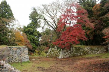 <p>A fiery maple on the Jugokentamon Gate and Turret foundations</p>
