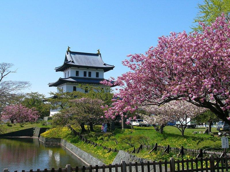 <p>城堡庭院是日本前100名樱花景点之一</p>