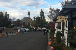 The street lined with pumpkins for the Halloween season.