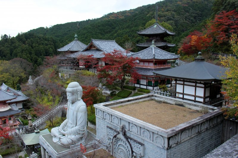 <p>Red maple leaves color the main grounds of Tsubosaka Temple.</p>