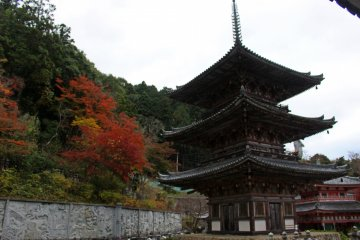 <p>The 3-story pagoda and the autumn colors above the bas-relief wall.</p>