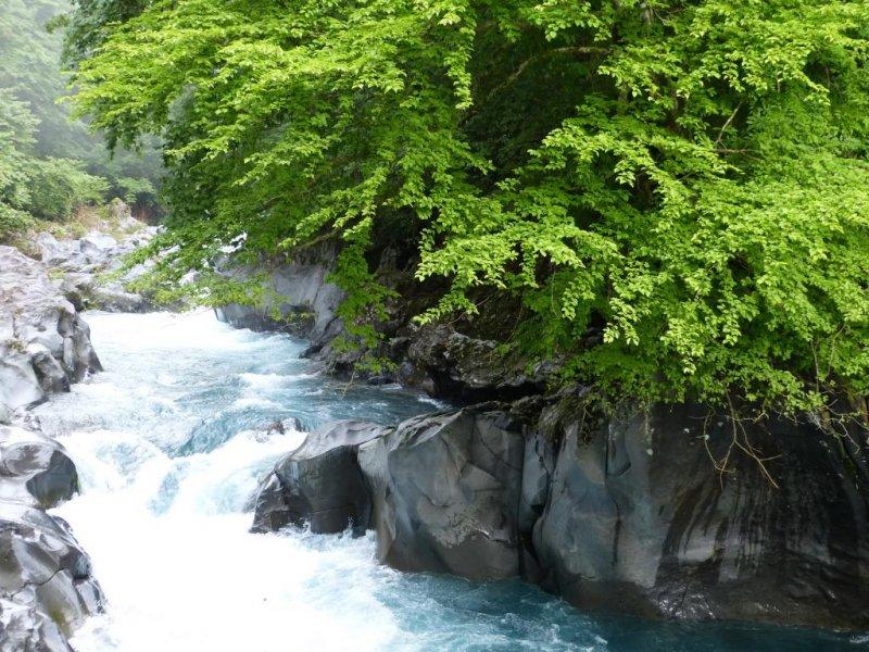 Rapid river splashing on rocks