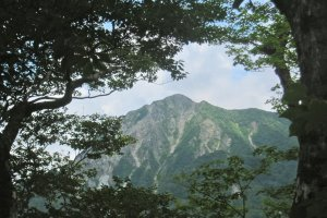 A sub-peak of Daisen is framed perfectly by the trees