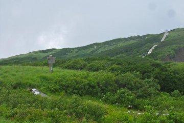 <p>กระดานทางเดินเหนือความสูง 1600 เมตร</p>
