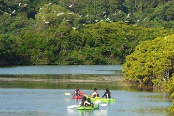 A Folk Story by Okukubi River