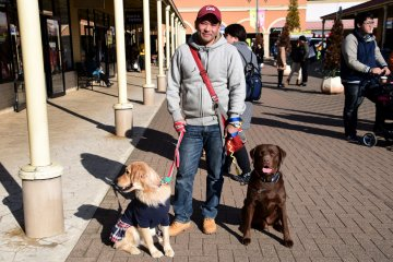 <p>A guy was walking a pair of formidable-looking dogs</p>