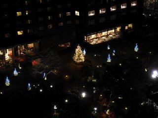 Nhìn cận cảnh khu vườn khi được chiếu sáng