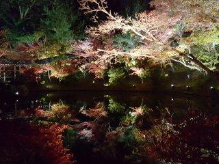 Sudut berbeda dari kolam yang memantulkan cahaya.