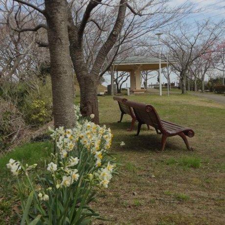 横須賀 塚山公園