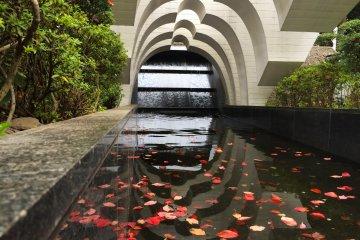 Yasukuni's 'Soul-Comforting' Spring