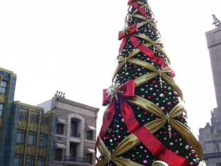 ต้นคริสมาสขนาดใหญ่ที่ประดับด้วยหลอดไฟกว่า 364,000 ดวง