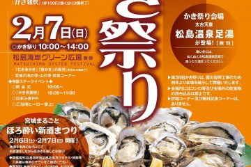 <p>A promo poster in Japanes</p>