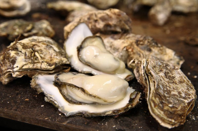<p>Delicious oysters await</p>