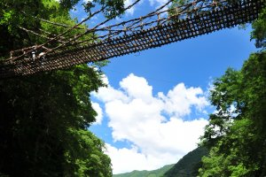 Kazurabashi vine bridge in the Iya Valley
