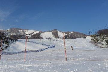 View from the Hirafu Gondola Base