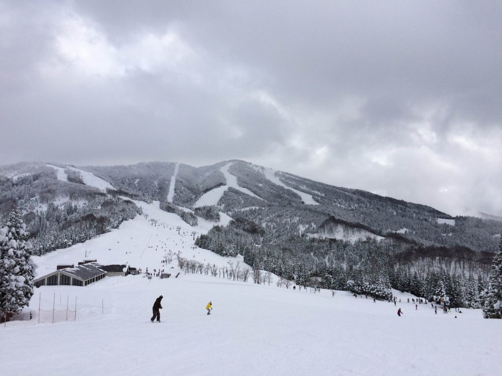 Taking advantage of Fukui's deep snows, visitors come from far and wide to hit the slopes at Katsuyama Ski Jam, the biggest and most popular ski resort in the prefecture