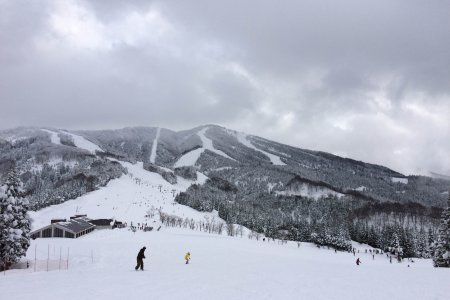 ฤดูหนาวที่ดีที่สุดในฟุคุอิ
