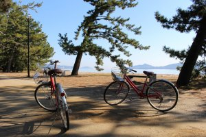 Kyoto Highlight: Rental bicycle break half way along Amanohashidate
