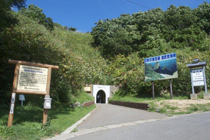 이 좁은 터널을 통한 짧은 여행