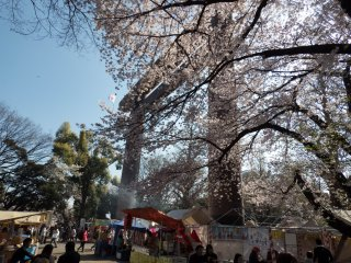 The colorful main torii, (gate) marks the entrance to Yasukuni Shrine