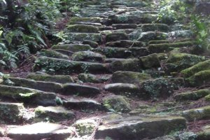 Old and moss-covered, seeminly endless stone steps - the characterisic sign of the Kumano Kodo trails