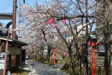 The streets really liven up during key seasons such as the spring cherry blossom season and autumn leaves season