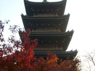 The pagoda, visible from outside the zoo, but you can get nearer inside