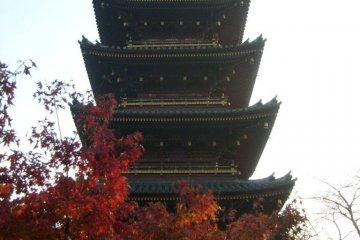<p>Пагода, которую видно из зоопарка. При желании Вы можете подойти поближе</p>