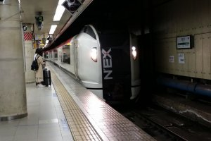 The Narita Express