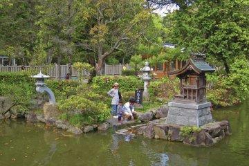 Part of the Izanagi Shrine compound