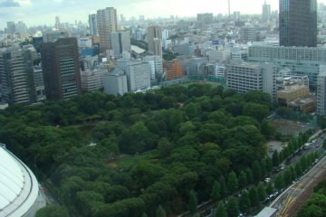 Looking down at the garden from the  Bunkyo Civic Center Observatory
